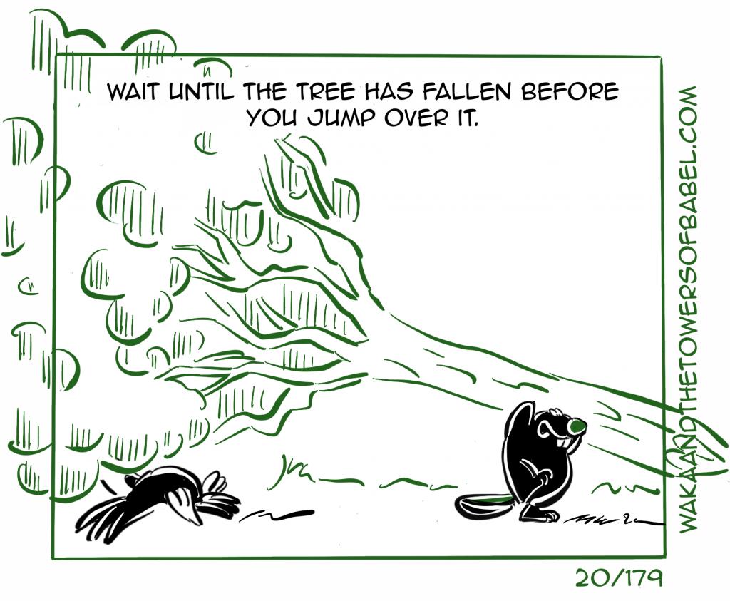 Tree has fallen