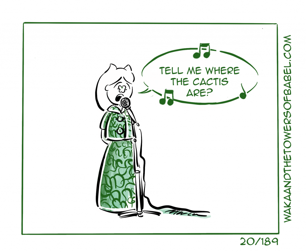 Where the cactis are?